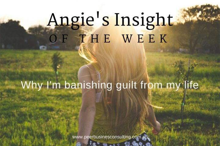 Angies-Insight-Guilt-peer-business-consulting