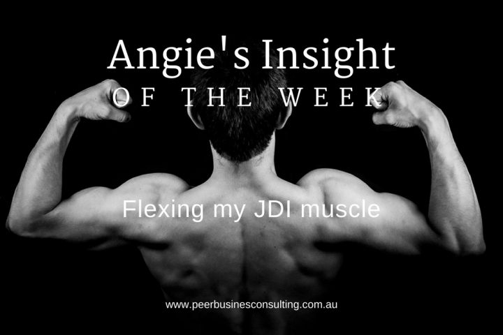 Angies-Insight-justdoit-business-consulting